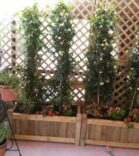 ξύλινες ζαρντινιέρες με φυτά & κατασκευή με καφασωτά