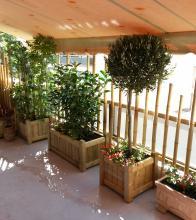 ξύλινες γλάστρες με φυτά σε βεράντα, μπαλκόνι