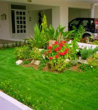 βραχόκηπος με φυτά & λουλούδια